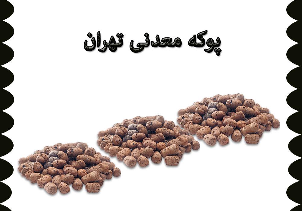 پوکه معدنی تهران فلاح